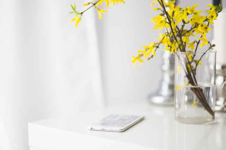 apple-flowers-iphone-desk.jpg
